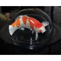 Aquaforte Fish Globe 700mm