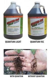 Microbe-lift Quantum Light 4lt